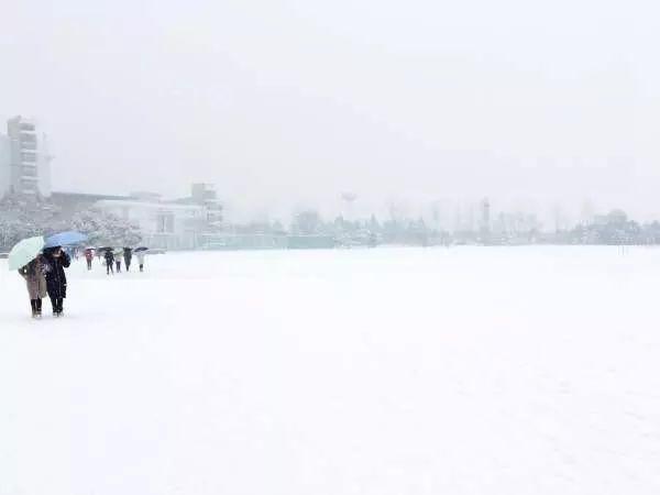 圖集/新年伊始,中國多地陸續下雪,分享部分雪景。